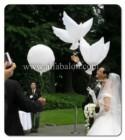 Balon Gas Foil Burung